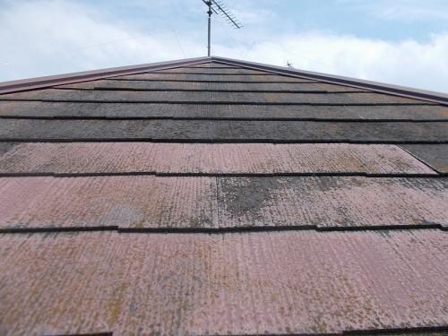 24年間手入れされなかった屋根の現状