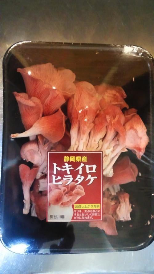 珍しいキノコ。トキイロヒラタケ!