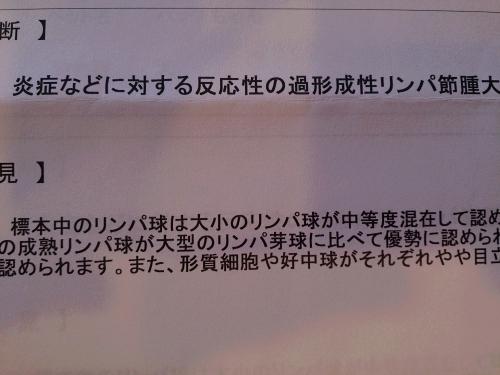 歯肉炎→リンパ節腫大