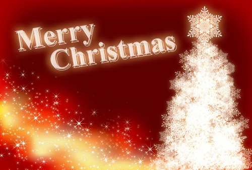 クリスマス(^O^)