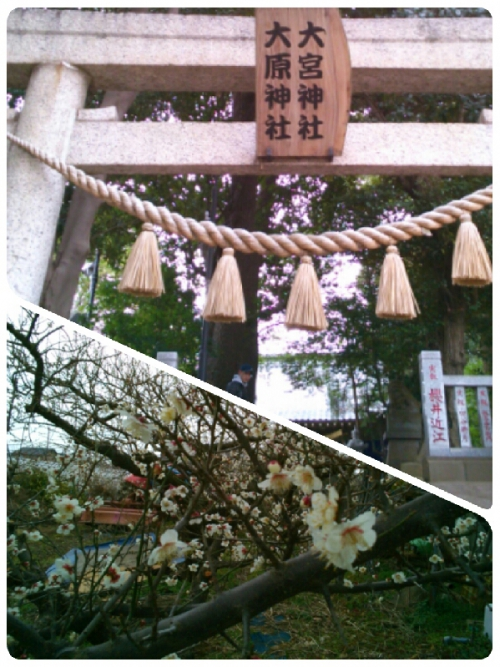 ◆3月の店休日のお知らせ◆