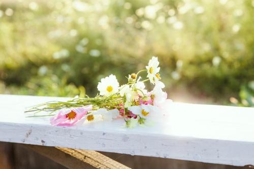 失敗しない結婚生活のための婚前調査