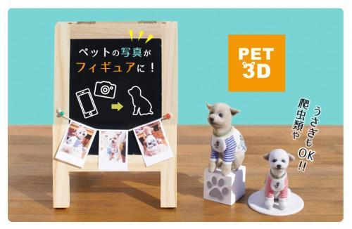 PET 3D フィギュア ~大切な思い出のために~