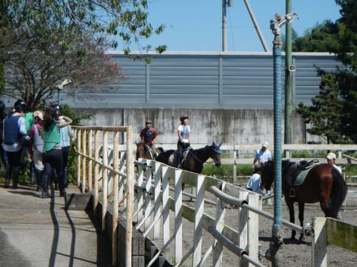 乗馬レッスン シルバーウィーク後半
