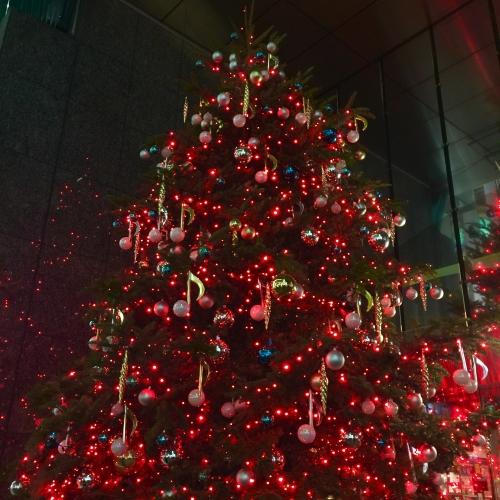 Merry Christmas…!♪♪♪