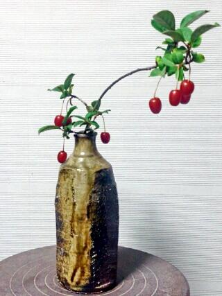 自作の花瓶にグミの枝を生けて、陶芸教室の入り口に。