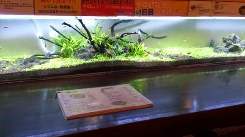 おしゃれなアクアリウムレストラン 観光‐旅行‐グルメ‐食事