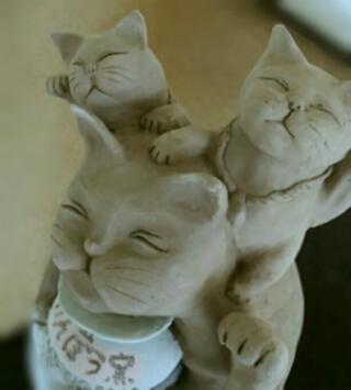 招き猫が乾いてきました。陶芸教室 東京 国立けんぼう窯