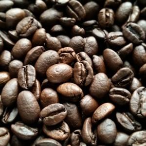 コーヒーの祖先は?