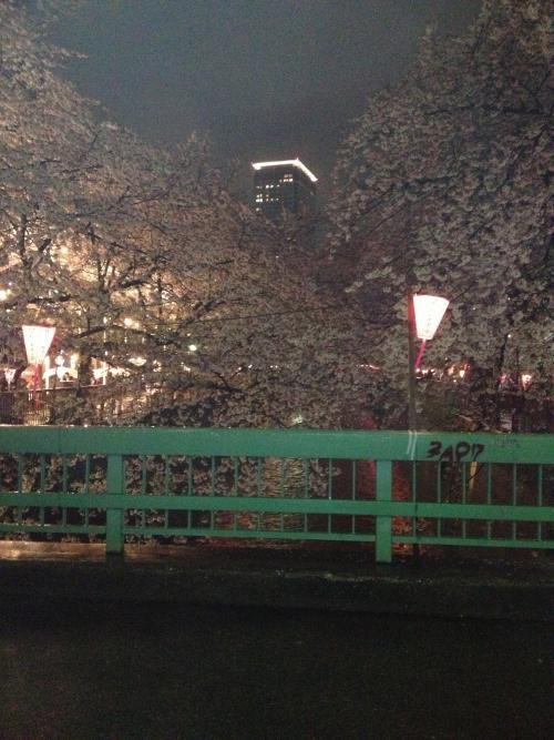 箸休め 〜お花見〜