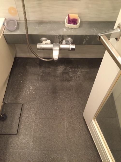 在宅 浴室 清掃