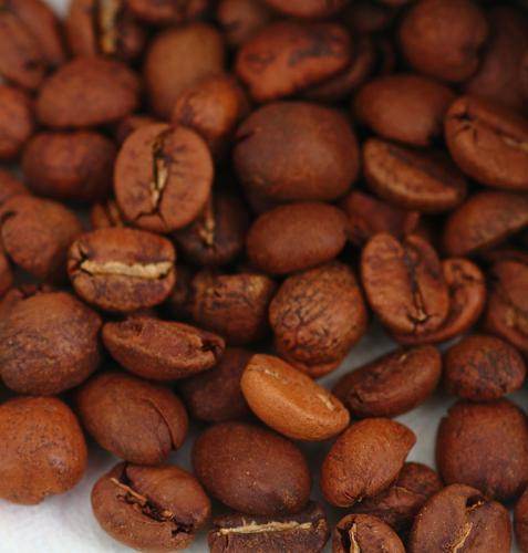 豆のブランド