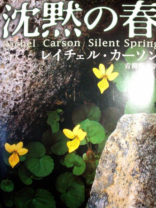 【つぶやき】春と環境