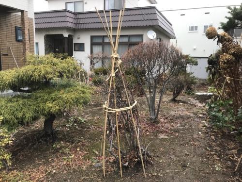 札幌市リフォーム工房楽人 冬囲い