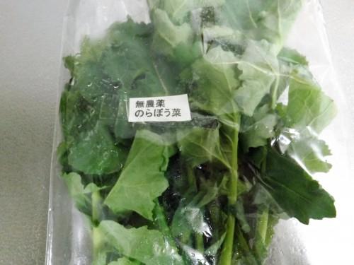 栄養とれてますか?春のお野菜をとりましょう!!