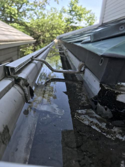 雨樋に水溜まり
