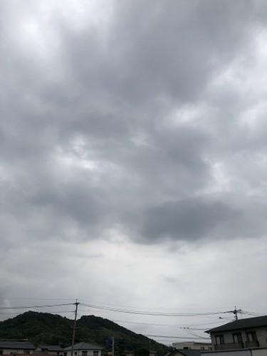 梅雨入り、田中です。