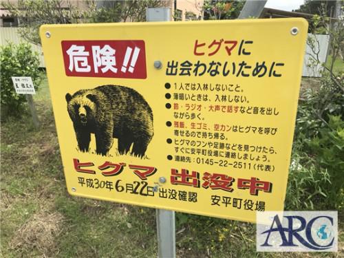 安平町でも熊!出没中!!土地買取りスタッフも警戒中!