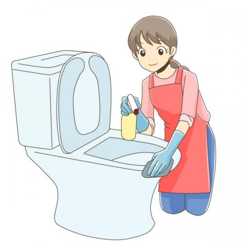 お掃除 定期掃除 クリーニング 水周り掃除