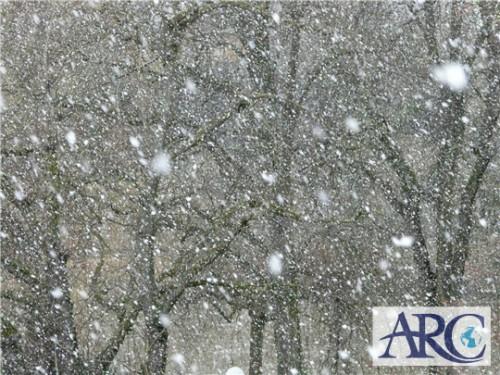 今日からさっぽろ雪まつり開催!太陽光にも投資あるんです!!