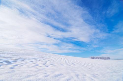 今日は節分の日('ω')北海道アークの土地付き太陽光投資!