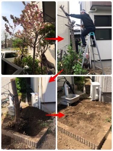 横浜市にてご不用品回収サポート・庭木抜根処分サポート実行