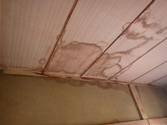 【座間市】雨漏り修理ならプロ在籍のマルセイテックへ