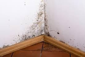 【大和市】外壁からの雨漏り修理は外壁塗装でお馴染みの弊社へ!