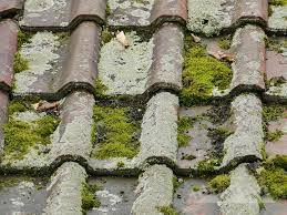 海老名市で長期保証で評判の屋根工事はマルセイテックです!