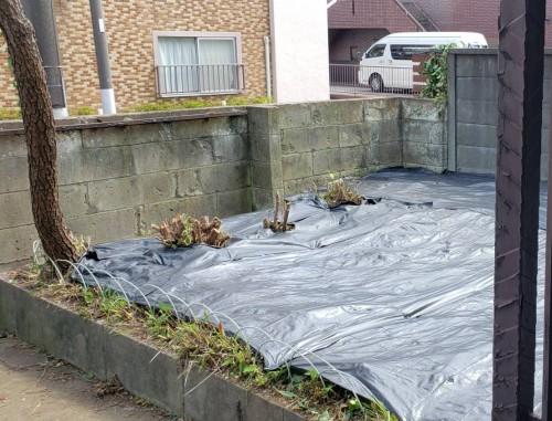 大田区にて草刈り・除草・処分サポート