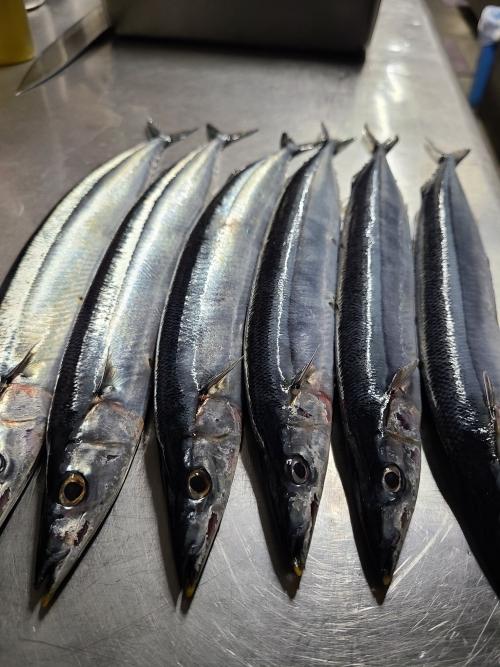 秋刀魚(^o^)/