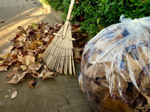 【庭の手入れ】お掃除は便利屋アルファ|草刈|落ち葉|埼玉