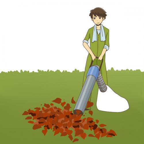 大田区にて伐採作業、回収サポート