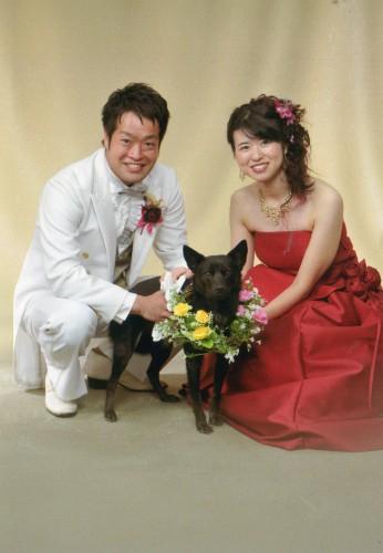結婚写真:犬も一緒に撮れて思い出に残りました髪形も似合う様に