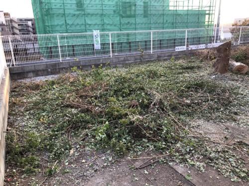 東京都 伐採作業 木の伐採 処分サポート
