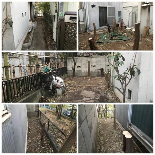 東京都 木の伐採 抜根作業 草むしり