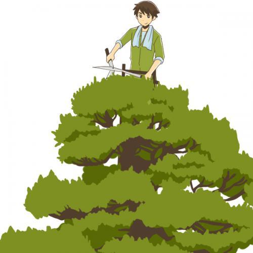 千葉県にて木の伐採作業実行です。