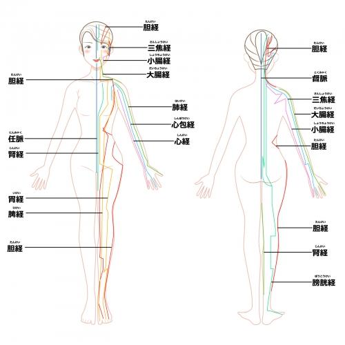 免疫力向上、体調不良はオリンピア鍼灸整骨院