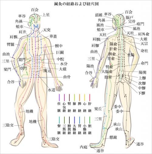 肩こり腰痛、身体のつらさはオリンピア鍼灸整骨院