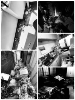 ごみ屋敷片付けや部屋の掃除まで八王子市便利屋