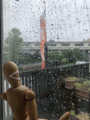 雨、雨、雨・・・