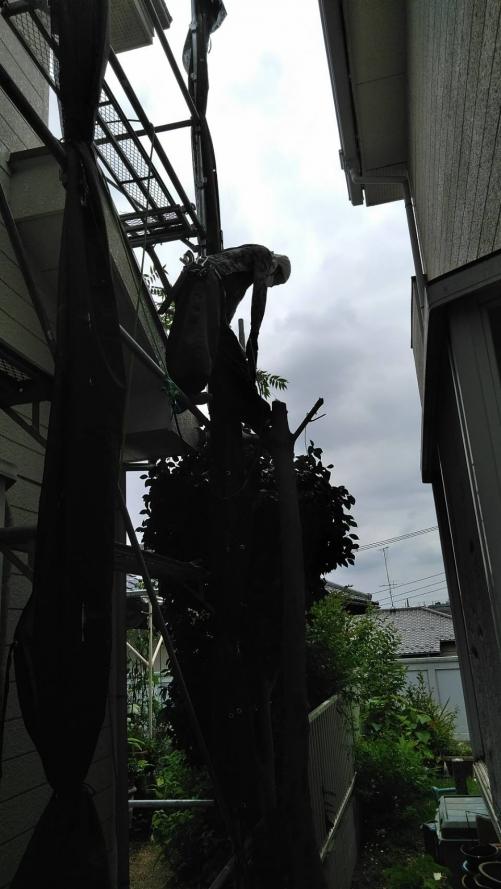 川崎市麻生区千代が丘某所塗り替え工事