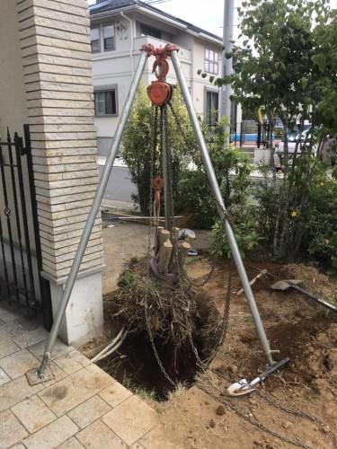 千葉市にて伐根作業実行です!