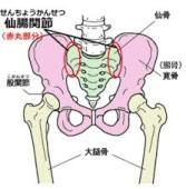 腰痛(仙腸関節由来の痛み)@鍼灸治療家のひとりごと