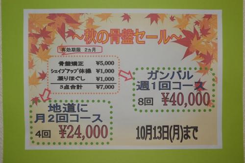 「秋の骨盤キャンペーン」〜シェイプアップコース〜やってます!